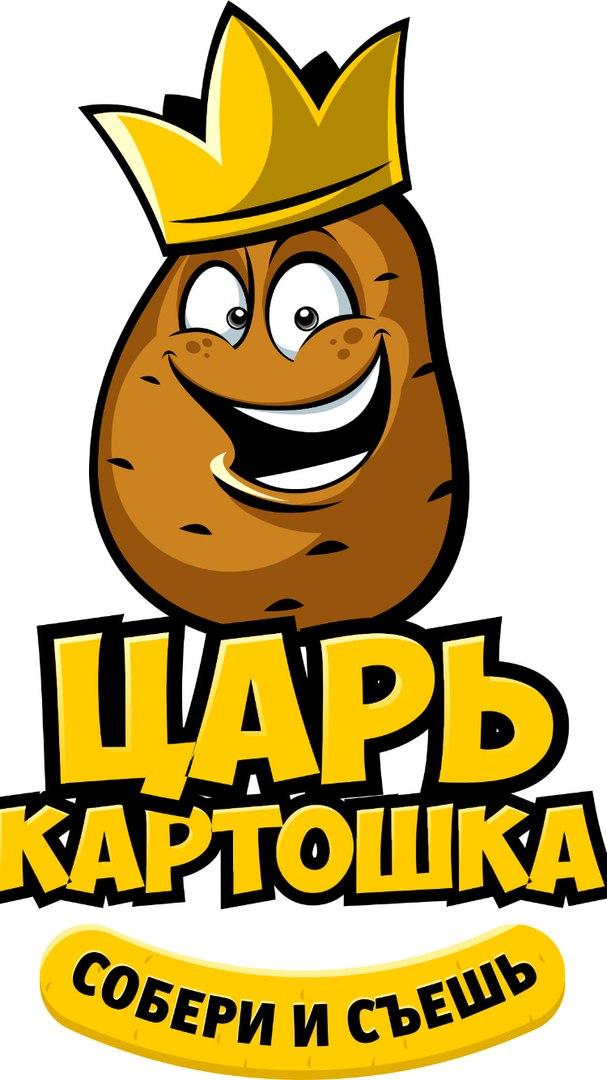 эмблема картошка в картинках овощ способен впитывать